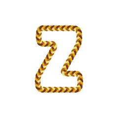 Z Braid Letter Logo Icon Design