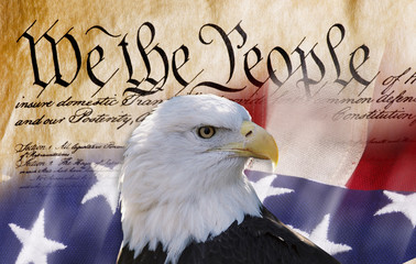 Wall Murals Eagle We the People.