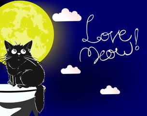 Love meow. Cartoon illustration. A loving cute cat under the moon.