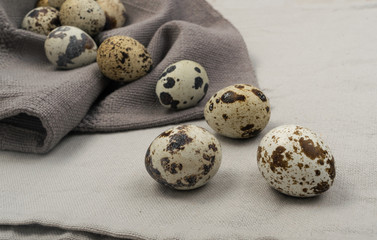 Quail Eggs on Grey Background
