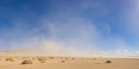 Strong winds blow a massive sandstorm across the open desert of the southwest.