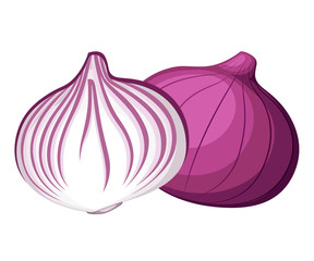 Fresh red onion and piece of onion vegetable from the garden organic food vector illustration isolated on white background web site page and mobile app design