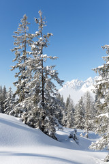 Fototapete - Alpenlandscaft im Schnee