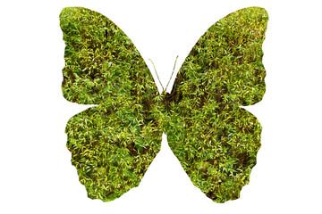 Очертания бабочки с зеленой травой внутри, изолирована на белом фоне