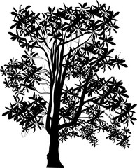 black tree with large leaves on white