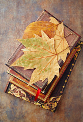 Dry autumn leaves on an old style books