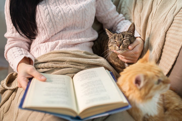 Fototapete - red and tabby and owner reading book at home