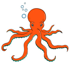 Sea animal, octopus. Inhabitant of the depths of the ocean. object on a white background vector.