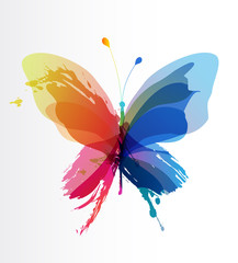 Photo sur Toile Papillons dans Grunge Colorful butterfly created from splash and colored objects.