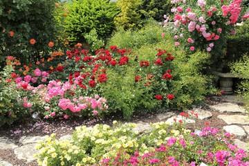 Roses garden.