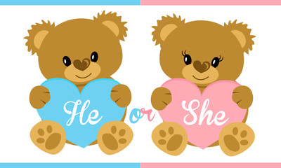 Cute vector character illustration. Teddy bear holding blue and pink heart. Gender reveal party. Boy or girl? Invitation template card. Birth child. Baby shower. Twins icon. She or he. Mister or miss