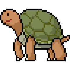 vector pixel art animal turtle