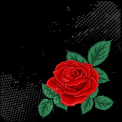 Red rose with green leaves . Vector.