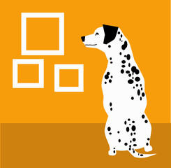 Dalmatian and frame on the orange background