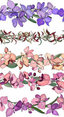 Endless pattern brushes made of exotic orchids. Seamless horizontal floral lines for romantic design and decoration.
