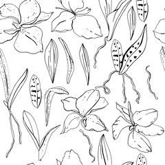 Seamless floral pattern with romantic orchid flowers. Endless texture for elegant floral and season design
