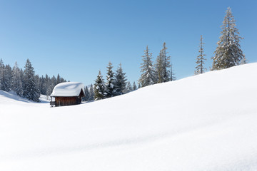 Fototapete - Winter in Austrian Alps. Amazing snowy scene with a traditional alpine hut covered with a lot of snow