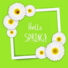 Hello spring vector. White frame with flowers and the words hello spring. EPS
