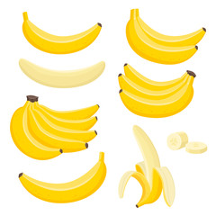 Vector set of bunches of fresh banana isolated on white