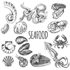 Vector illustration sketch - seafood set.