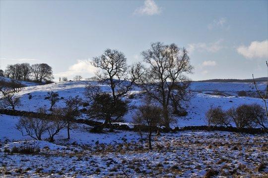 Winter in Dalmellington