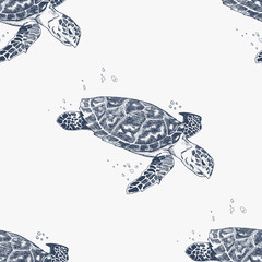 Seamless pattern with hand-drawn turtles. Animal background. Sea life