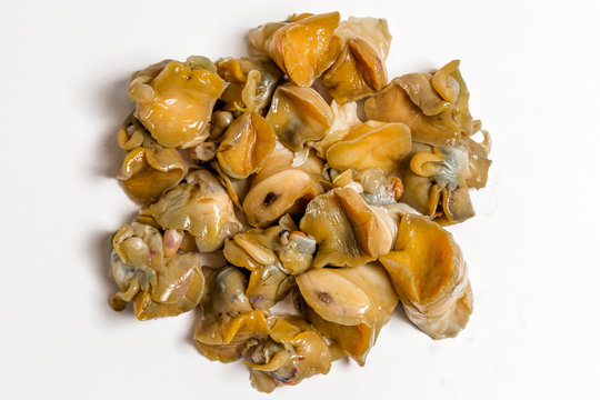 common whelk meat lies on a white background