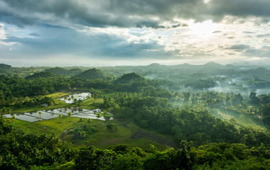 Chocolate Hills in Bohol island, Philippines during the sunrise