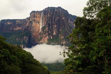 Angel Fall, from the Carrao river, Canaima, Venezuela.