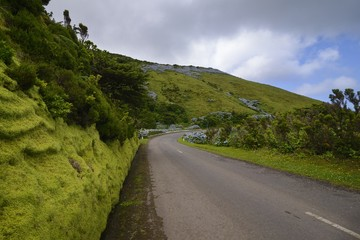 Scenic road in Flores island, Azores, Portugal