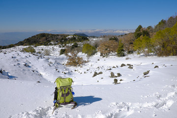 Wall Mural - Winter Landscape In Etna Park, Sicily