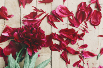 beautiful red peonies and petals  on rustic wood background. greeting card with space for text. top view. happy womens day or mothers. valentine day. modern rural floral image