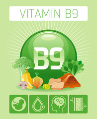 Folic acid Vitamin B9 rich food icons. Healthy eating flat icon set, text letter logo. Diet Infographic diagram flyer, liver, banana, onion. Table vector illustration background, human health benefits