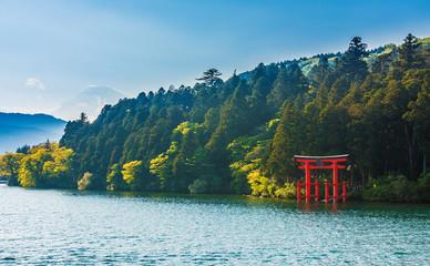 Mount Fuji from lake Ashinoko, Hakone, Japan Wall mural