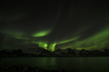 Northern Lights at Senja / Norway Feb 2018