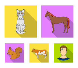 Horse, cow, cat, squirrel and other kinds of animals.Animals set collection icons in flat style vector symbol stock illustration web.