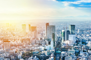 Wall Mural - Asia Business concept for real estate and corporate construction - panoramic modern city skyline bird eye aerial view of Shinjuku under blue sky in Roppongi Hill, Tokyo, Japan