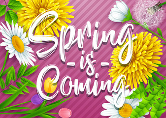Spring is coming. Spring wording with various flowers on striped purple background