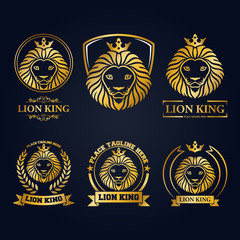 Gold lion head mascot collection