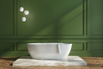 Green wall bathroom interior