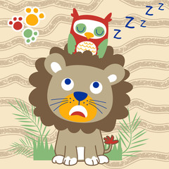 funny owl cartoon sleep on lion head