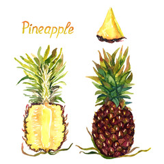 Pineapple whole fruit and cut half, hand painted watercolor illustration with inscription isolated on white background
