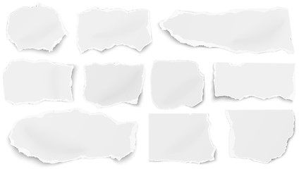 Set of paper different tears scraps isolated on white background