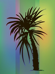 Tropical vector illustration. Palm tree at beautiful gradient background.