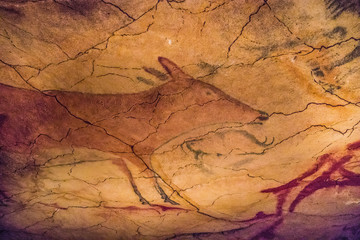 Rock paintings in a cave