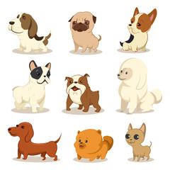 Cute cartoon dog vector set. Pets of different breeds. Funny little puppies. Illustration of a doggie character isolated on a white background.