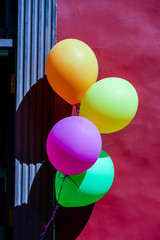 Photo Picture Image of colored air baloons toy