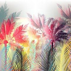 Jungle colorful palms and tropical plants. Vector design
