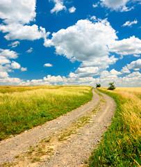 Fototapete - Feldweg durch reife Felder, Landschaft im Sommer, blauer Himmel mit Kumuluswolken