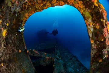 scuba diver diving Ship Wreck in maldives indian ocean
